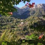 Foto de Hostal Villa Verde