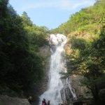 Khao Yai National Park Foto