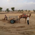 @ rajastan desert