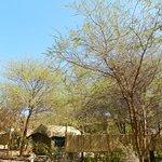 Foto de Kwalape Safari Lodge