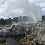 Te Puia - Pohutu Geyser, Rotorua