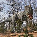 t-rex_large.jpg
