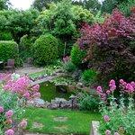 Garden of the hotel.