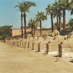 Avenue of Sphinxes Luxor - Egypt