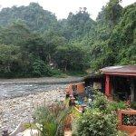 Photo of Jungle Inn