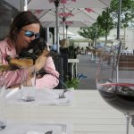 great outdoor seating ( dog friendly!)