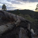 Sunset Crater Volcano National Monument Foto