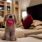Foto de Academy Plaza Hotel