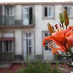Photo of Dear Porto Guest House