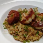 Scallop Risotto - to die for!