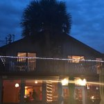 They have a palm tree growing out of the restaurant. Whimsical.