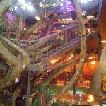 Photo de Tree House Restaurante & Cafe