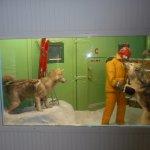 ArghyaKolkata Canterbury Museum, Christchurch-45