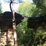 Stand Rock German Shepherd jumping accross