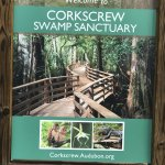 Corkscrew Swamp Sanctuary Foto