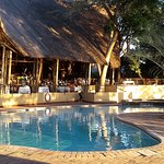 Photo of Chobe Safari Lodge