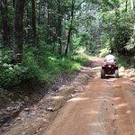 Foto de Bluff Mountain Adventures