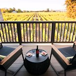 Vineyard Suite isn't just a name, it;s where you are.
