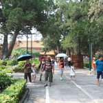 Photo of The Imperial Garden of The Palace Museum