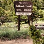 Roosevelt Forest picnic area