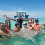 Grand Cayman Swimming with the StingRays!