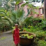 Photo de The Pink Plantation House