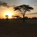 Photo of andBeyond Grumeti Serengeti Tented Camp