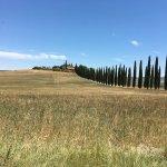 Agriturismo Cretaiole di Luciano Moricciani Foto