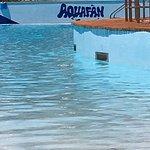 Aquafan Foto