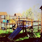 Kids can go wild on this  jungle gym!!!