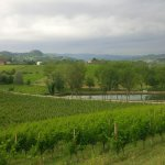 Photo of Tenuta la Romana