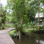 Photo de Mulu World Heritage Area Accommodation