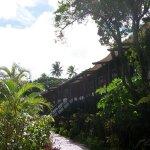Hotel bungalow.