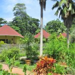 vue de la chambre sur les autres bungalows