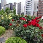Photo de Nakanoshima Park