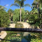 Foto de Aparthotel Novo Resort
