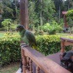 Photo of Monte Amazonico Lodge