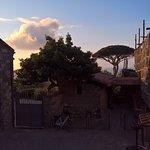 """Photo de Agriturismo """"Il Giardino di Vigliano"""""""