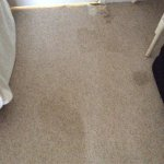 The family room double bed & the stains on the carpet in our room upstairs inside the house.