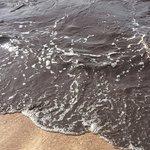 Brown ocean water :-(
