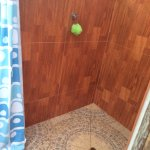 Clean personal bathroom and shower, tended to daily.