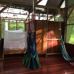Beautiful charming cabin. Very safe and personal, surrounded by the jungle.