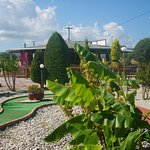 great places to play crazy golf its a must if your in kalamaki