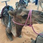 Photo de Moroccan Sahara