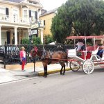 Because of the historic nature of the hotel many horse drawn tours stop to describe it's history