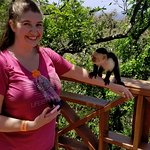 Friendly monkey!