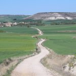 """Typical stretch of the Camino in the Spanish """"meseta"""""""