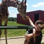 Photo de Wild Animal Safari
