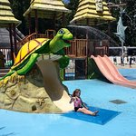 Yogi Bear's Jellystone Park Camp-Resort at Tall Pines resmi