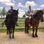 Foto de Hickory Hollow Horse Farm
